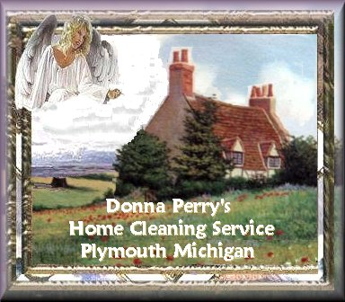 Donna Perrys Home Cleaning Service