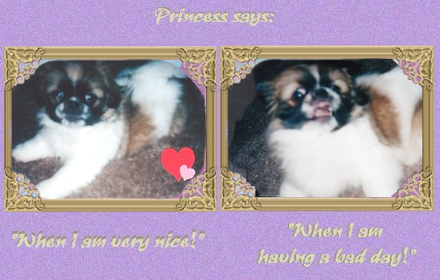 Princess's Good and Bad Days